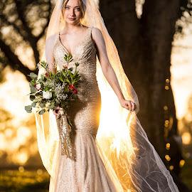 The Bride by Rob Morris - Wedding Bride ( bride, victoria, wedding photography, woman, bridal, coachhouse, sunset, lady, model, temecula, wedding, girl,  )