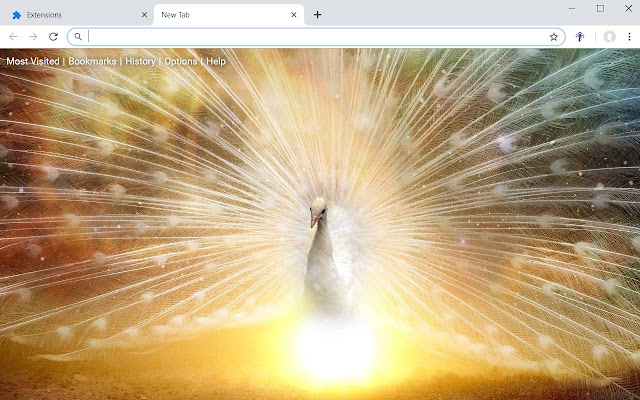 Peacock Wallpapers Peafowl New Tab Theme