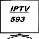 IPTV 593