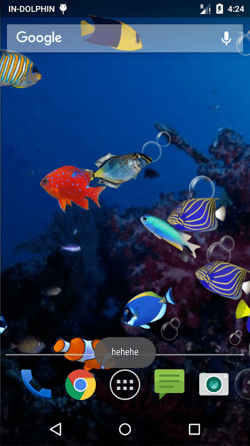 Fish aquarium live wallpaper android apps on google play for Live fish store