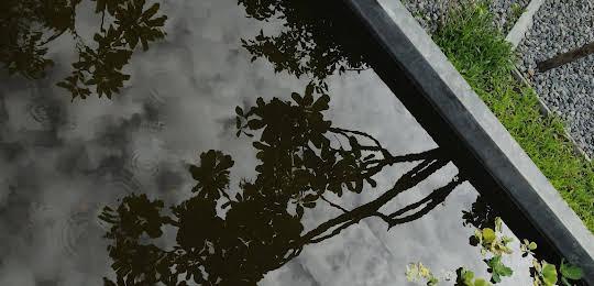 Frangipani Villa Hotel - Siem Reap