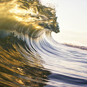 Morning Light by Morgan Grosskreutz - Landscapes Waterscapes ( water, florida, wave, ocean, morning, surf )
