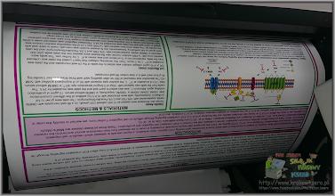 Photo: poster papier foto druk od ręki wydruk