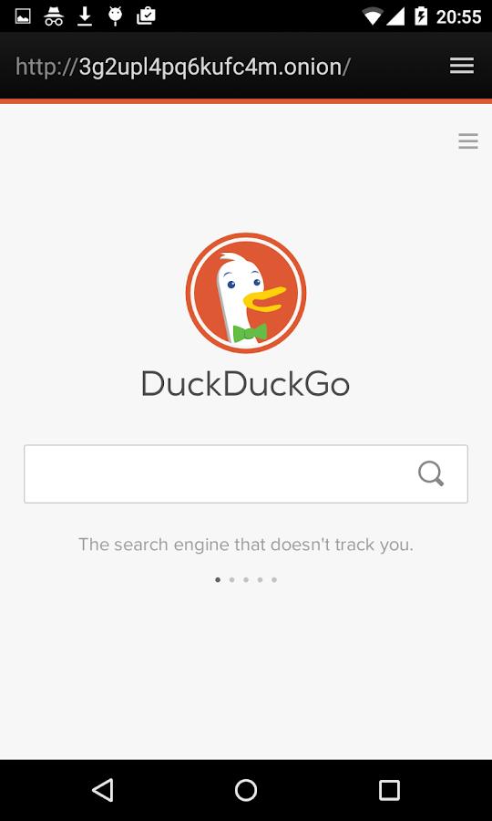 Onion web proxy : Por qué utilizar google dns