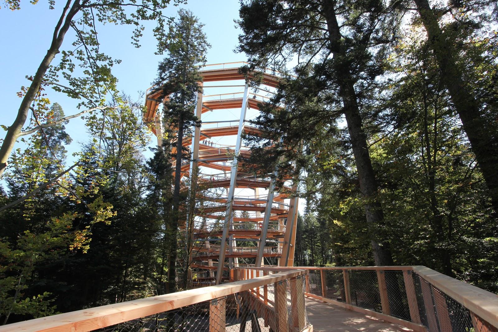 Hoch hinauf geht es auf den Baumwipfelpfad im Nördlichen Schwarzwald
