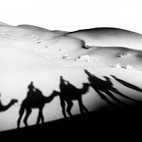In viaggio tra le dune del Sahara di