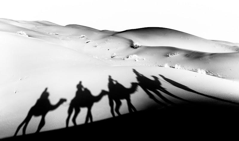 In viaggio tra le dune del Sahara di MarcoGiorgi