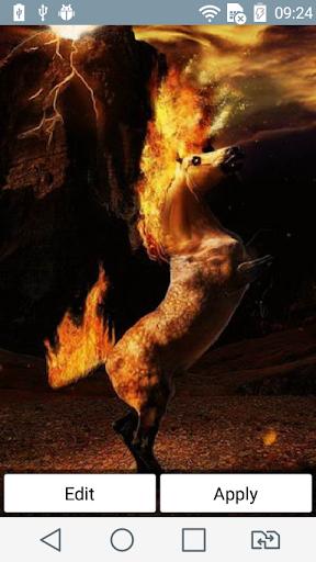 Horse ablaze live wallpaper