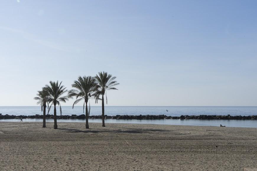 Imagen de la Playa de El Zapillo.