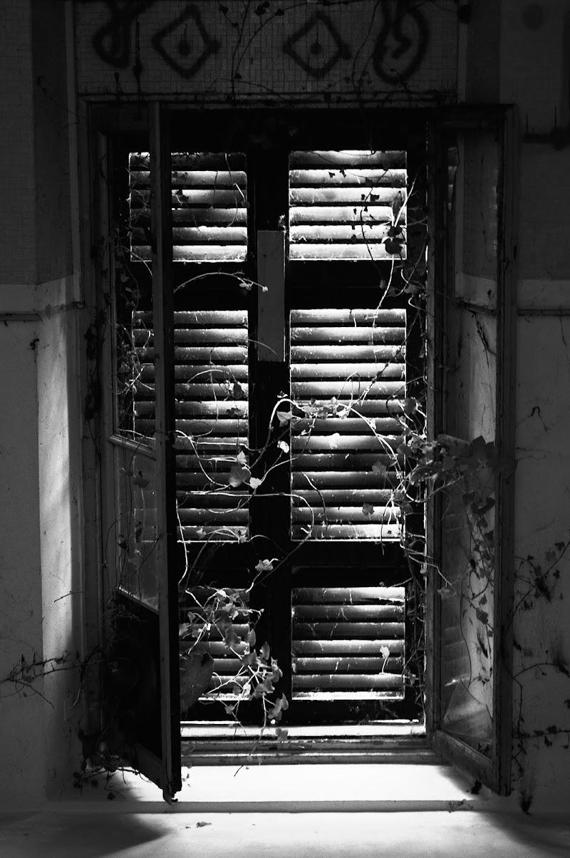 Non aprite quella finestra di Daniele Bertoletti