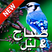 Arabic Good Morning & Good Night Wishes Love Android APK Free