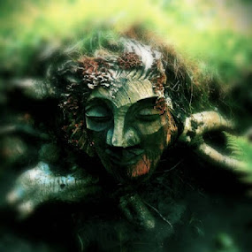 Face in the woods  by Ste D - Sculpture All Sculpture