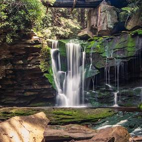 Elakala Falls by Chris Reynolds - Landscapes Waterscapes ( nikon, davis wv, west virginia, long exposure, landscape,  )