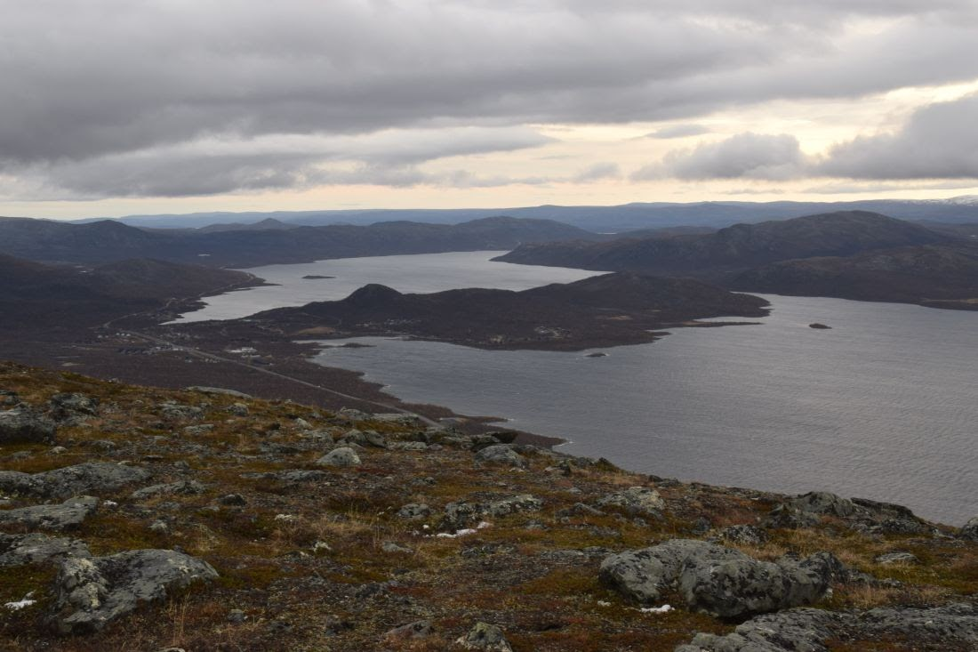 Осенний поход по заполярной Швеции: 100 км пешком с собакой по национальному парку Sarek