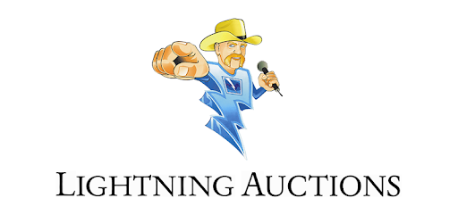 lightning auctions apps on google play