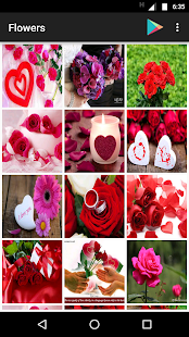 Flower Images- screenshot thumbnail