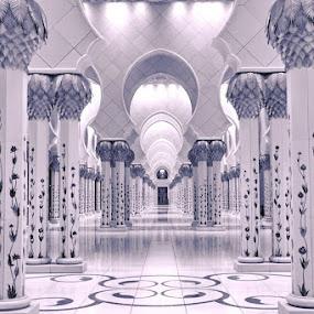 Beauty by Manoj Kumar Kd - Buildings & Architecture Places of Worship ( uae, abudhabi, sheikh zayed mosque )
