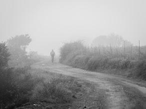 Photo: Fog