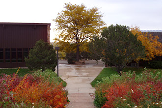 Photo: Early fall brings many color changes to the campus.