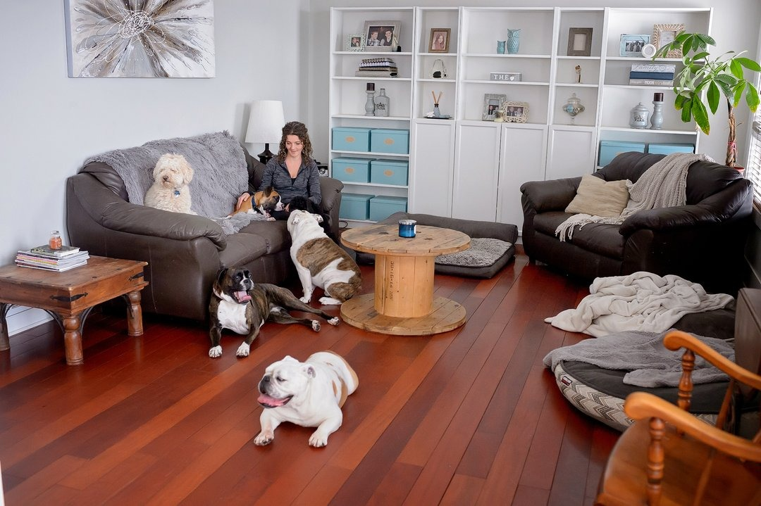 A spacious living room, woman (Nancy) sits on couch surrounded by five dogs.