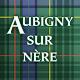 Download Aubigny sur Nère Application mobile For PC Windows and Mac