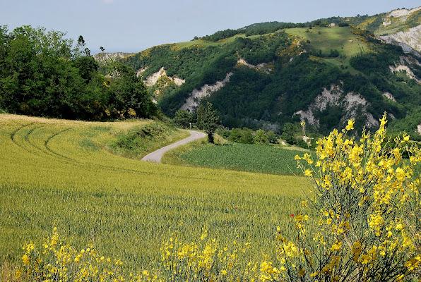 Romagna solatia di Samvise65