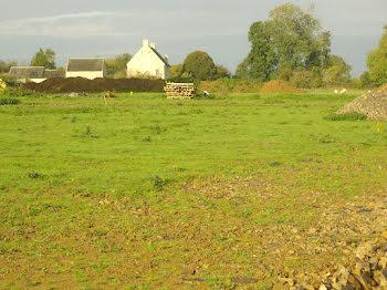 terrain à Fierville-Bray (14)
