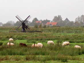 Photo: Small windmills like that one are pumps to help keep the reclaimed fields dry. Most of the Netherlands is below sea level, so it's a constant battle to keep the land they use for agriculture.