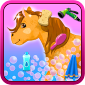 Horse Princess Wash & Cleanup
