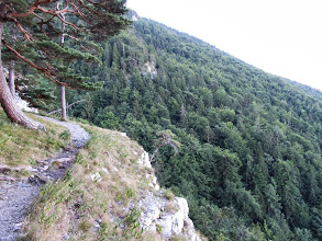 Photo: 23.Szlak na Tlstą. Ścieżka przez dłuższy czas poprowadzona jest nad malowniczym urwiskiem.