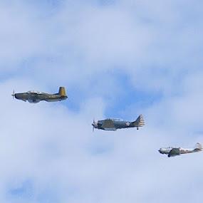 Vintage War Planes by Jason Asselin - Transportation Airplanes ( parade, flying, airplanes, vintage, july 4th )
