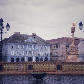 Timisoara  by Adela Rusu - City,  Street & Park  Street Scenes ( love )