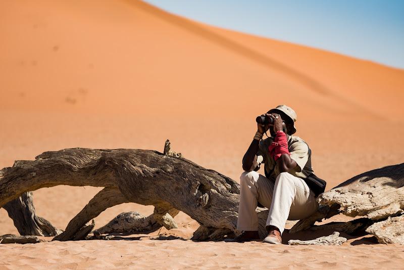 Fuga nel deserto di Mizio
