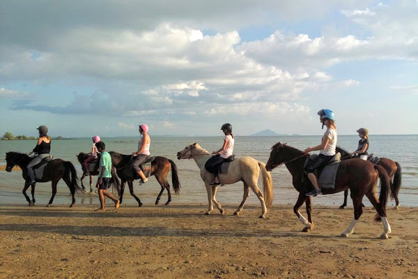 Galopp down the beach