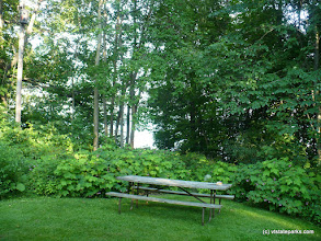 Photo: View from the porch of Cabin Sedge at Grand Isle State Park by Julie Nichols