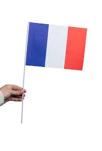 Pappersflagga, Frankrike