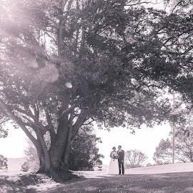 Rays of Sunshine by Sarah Sullivan - Wedding Bride & Groom ( nikon, sarah sullivan photography, wedding )