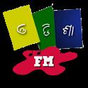 Odisha FM Radio icon