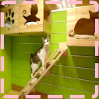 Cat House Designs icon