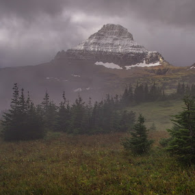 Glacier National Park by Ramsey Samara - Landscapes Mountains & Hills ( mt. reynolds, snow, logan pass, glacier national park, fog )
