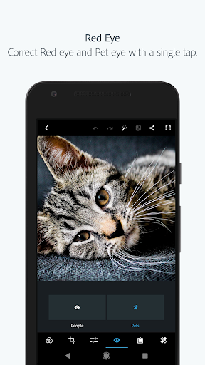 Adobe Photoshop Express:Photo Editor Collage Maker  screenshots 8