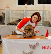 Photo: Стюарды наш кошачий вес берут как штангу -)))