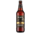 Black Sheep Golden Sheep