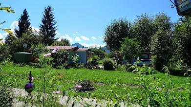 Photo: der Blick in Nachbars Garten