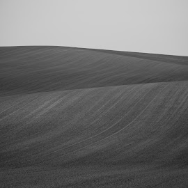 by Dušan Gajšek - Black & White Landscapes ( pokrajina, potovanja, ju?na moravska )