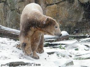 Photo: Schnee, ueberall Schnee :-)