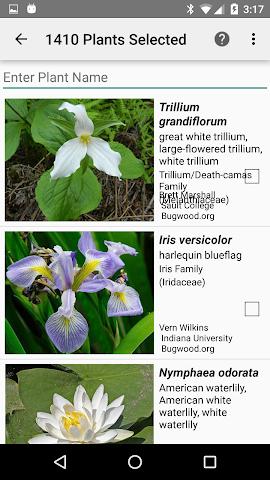 android Ontario Wildflowers Screenshot 1