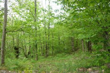 terrain à Saint-Hilaire-de-Lavit (48)