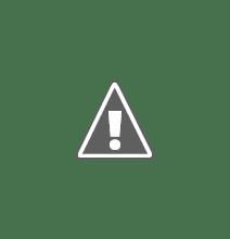 Photo: Furby,Tosca en Toby.