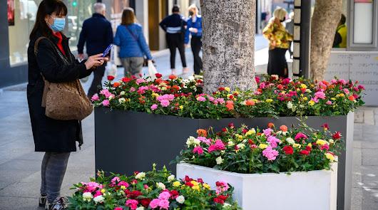 La nueva imagen del paseo: más flores y color para hacerlo aún más atractivo